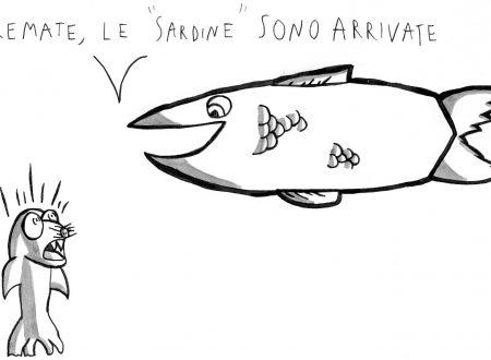 Tremate, le sardine sono arrivate